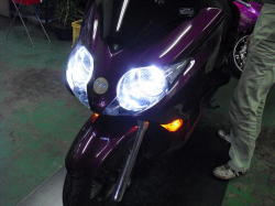FORZA HID 6000k